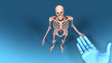 Skeleton animation sequence